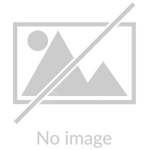 راهپیمایی دانش آموزان دبستان شهید آیت 1 به روایت تصویر